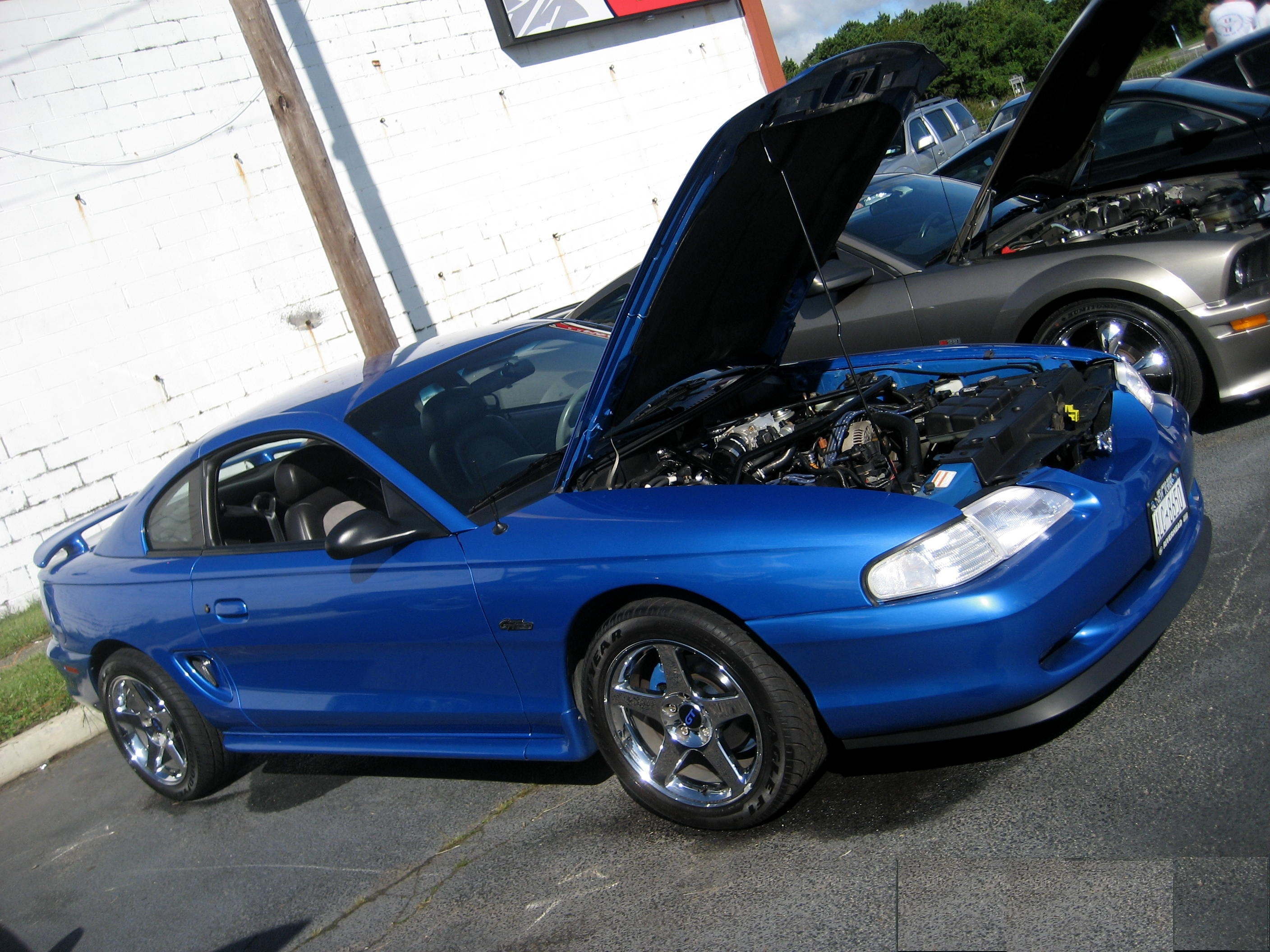 Another mattk1 1998 Ford Mustang post... - 3296115