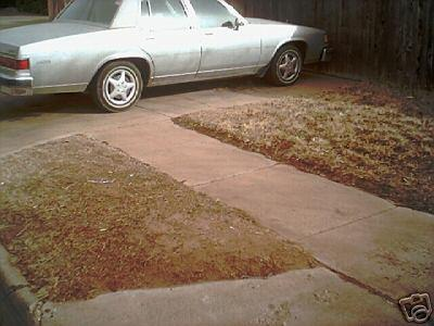 Another FLAWDAMADE 1984 Buick LeSabre post... - 3416872