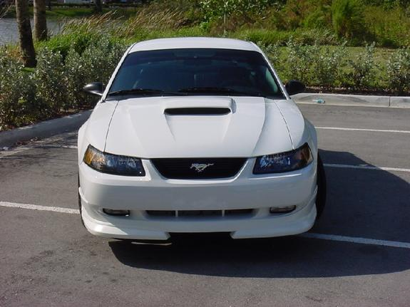 Another pro_white_stang 2003 Ford Mustang post... - 3478712