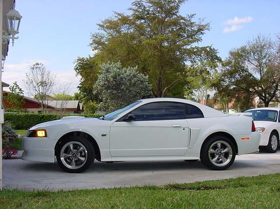 Another pro_white_stang 2003 Ford Mustang post... - 3478727