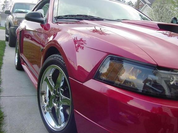 efox575 2001 Ford Mustang
