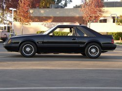 565542 1985 Ford Mustang