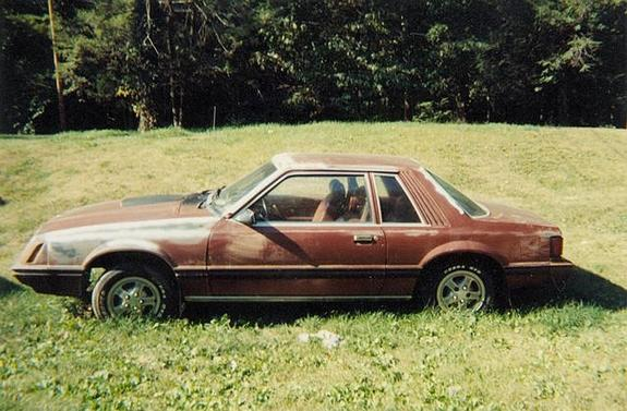 Another ihaveapony 1979 Ford Mustang post... - 3694513