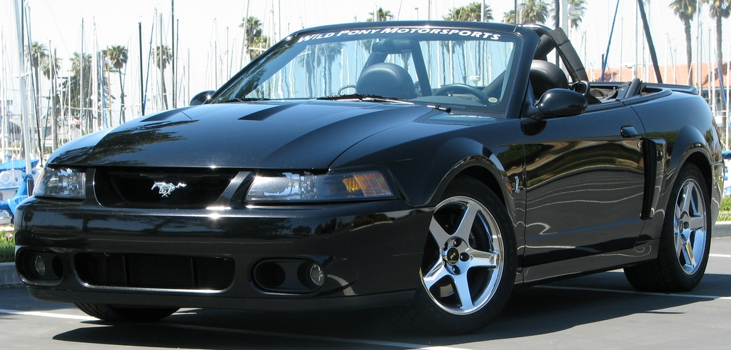 Another 04Terminator 2004 Ford Mustang post... - 3757207