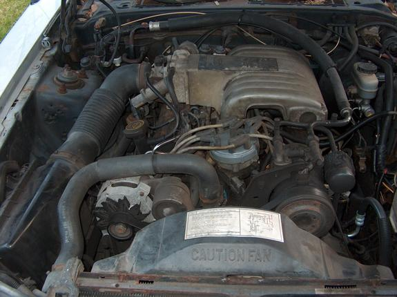 Another Thumphed 1988 Ford Thunderbird post... - 3758137