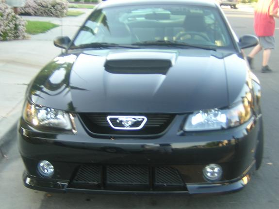 Roush4sale 2003 Ford Mustang 3767851