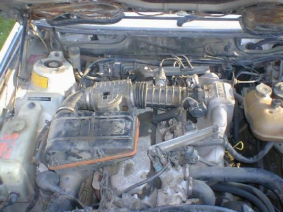 Another greyhartge 1988 BMW 5 Series post... - 3862698