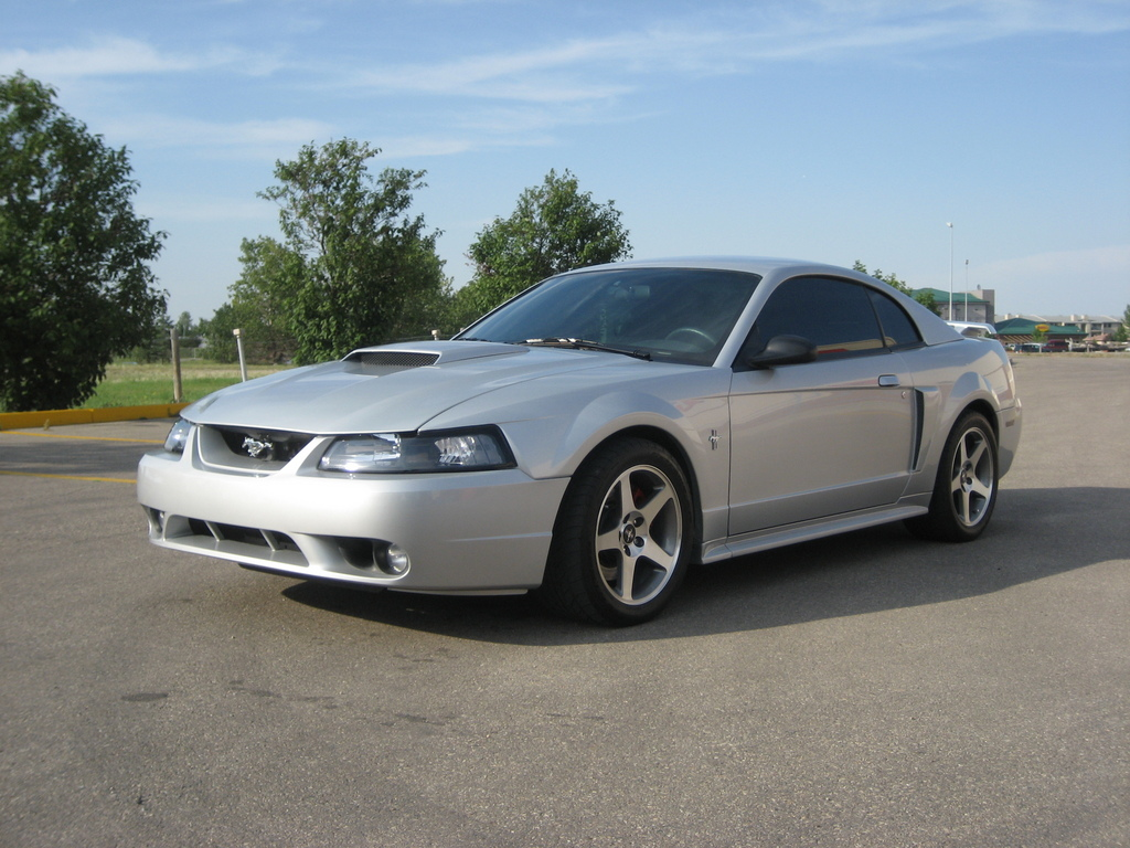 Silver04GT 2004 Ford Mustang 3950159