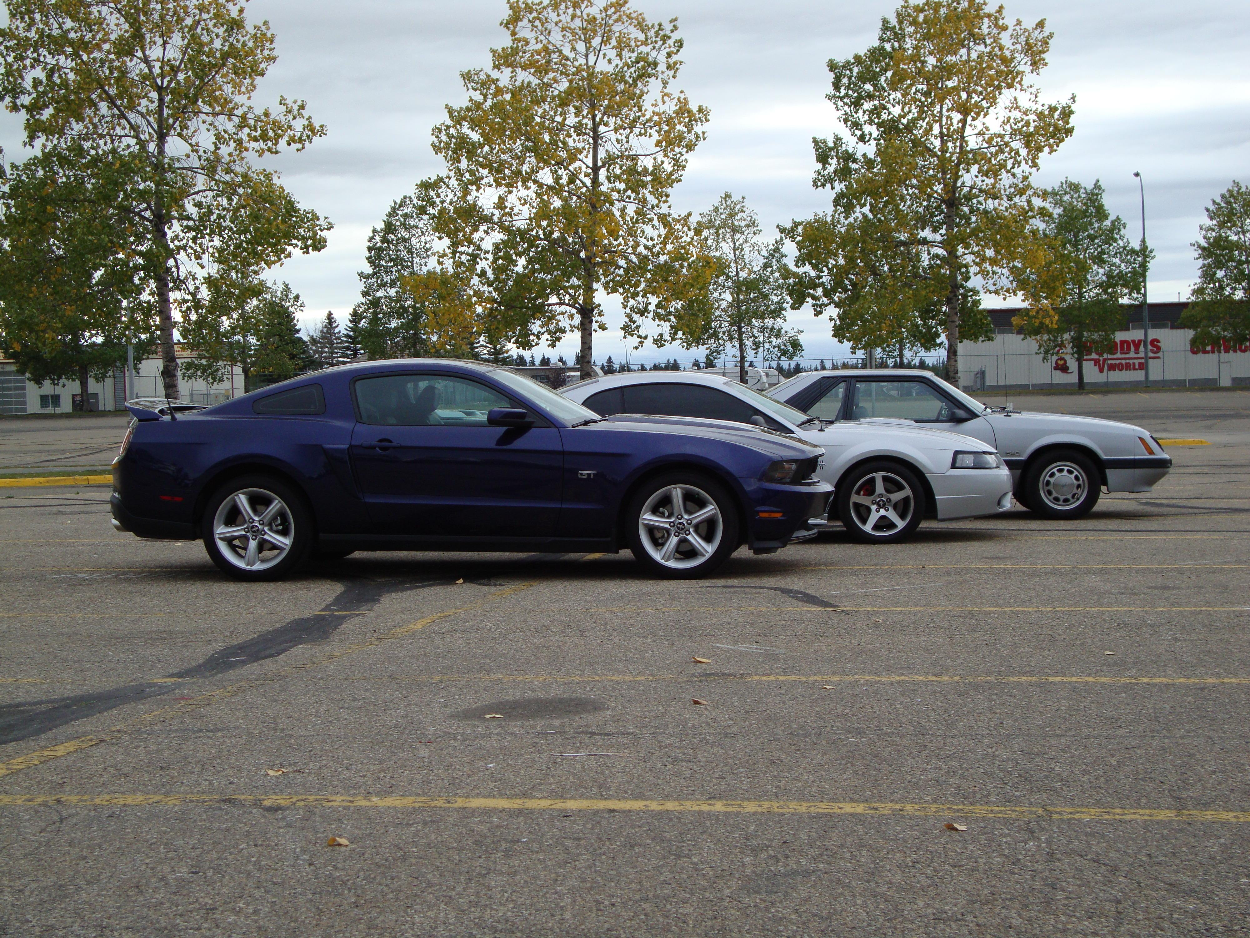 Silver04GT 2004 Ford Mustang 3950171