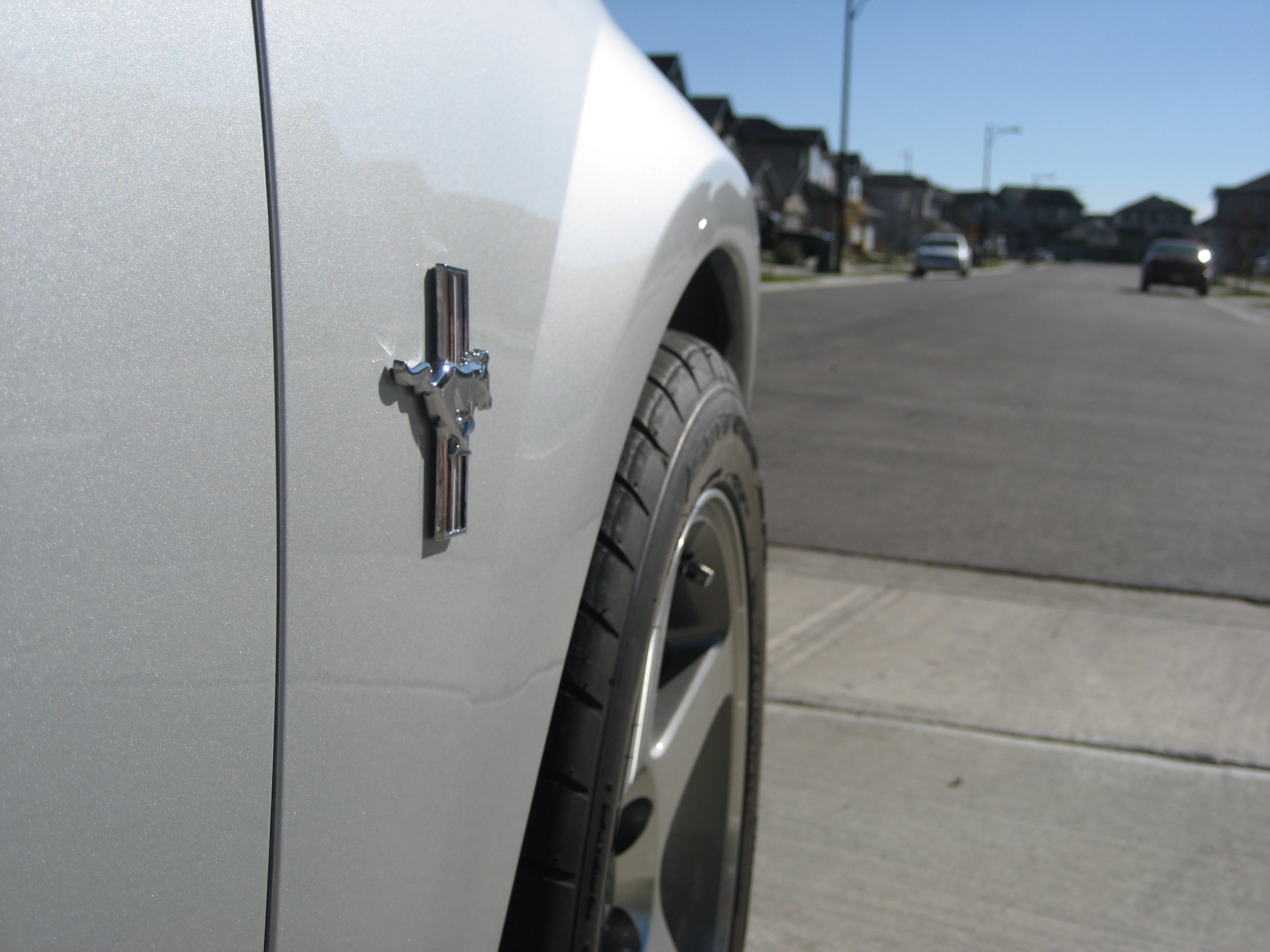 Silver04GT 2004 Ford Mustang 3950193