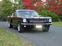66HertzClones 1966 Ford Mustang