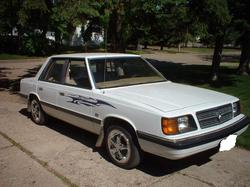 dsturbed 1986 Dodge Aries