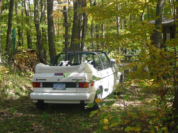 Another fluffyvw 1993 Volkswagen Cabriolet post... - 4036536