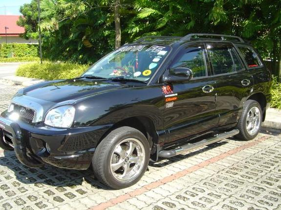 arclaveus 2004 hyundai santa fe specs photos modification info at cardomain. Black Bedroom Furniture Sets. Home Design Ideas