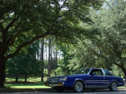 pitbulldukes 1985 Buick Regal