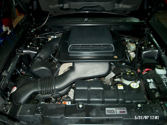 Another mach1eh 2003 Ford Mustang post... - 4148421