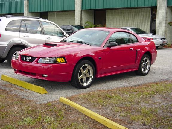 mustanggt2003 39 s 2003 ford mustang in lutz fl. Black Bedroom Furniture Sets. Home Design Ideas