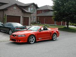 saleen mustang view all saleen mustang at cardomain. Black Bedroom Furniture Sets. Home Design Ideas