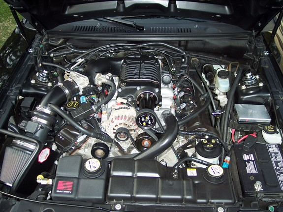 Another jas03ms 2003 Ford Mustang post... - 4443933
