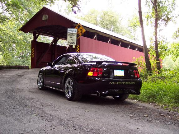 Another jas03ms 2003 Ford Mustang post... - 4443937