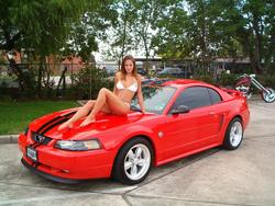 steelfalcon29 2004 Ford Mustang