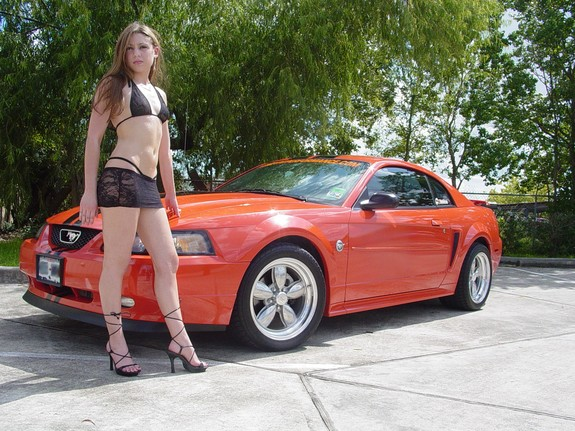 Another steelfalcon29 2004 Ford Mustang post... - 4457920