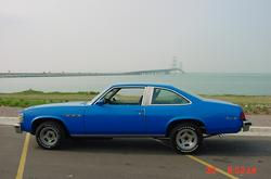 farmgirl75s 1977 Buick Skylark