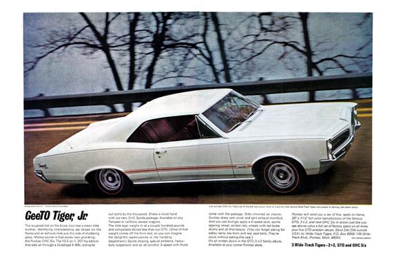 shifterkart26's 1966 Pontiac Tempest