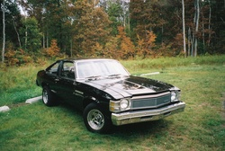 ChampionN84s 1977 Buick Skylark