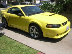 justtheguy555 2001 Ford Mustang