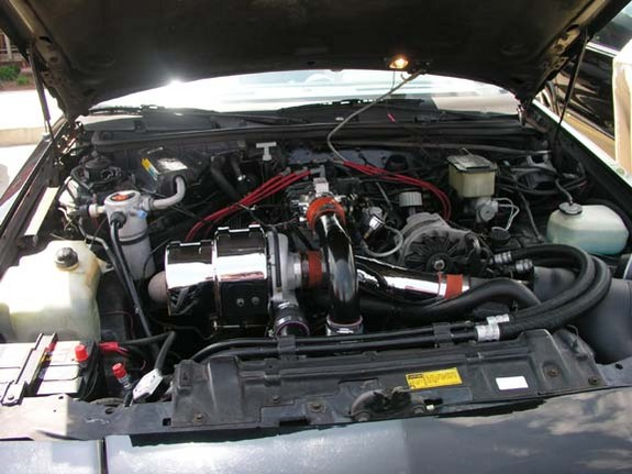 Another Cobraprinces 2004 Ford Mustang post... - 4727854