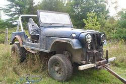 the_pro 1979 Jeep YJ