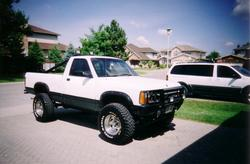 ADAMOs_DODGE 1989 Dodge Dakota Regular Cab & Chassis