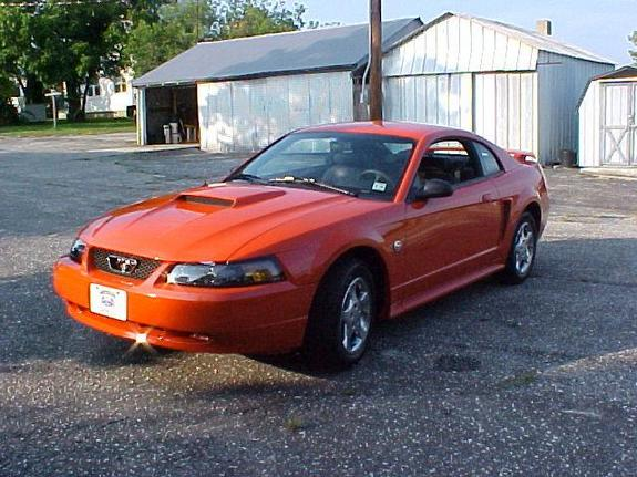 Another meteorachick 2004 Ford Mustang post... - 4908986
