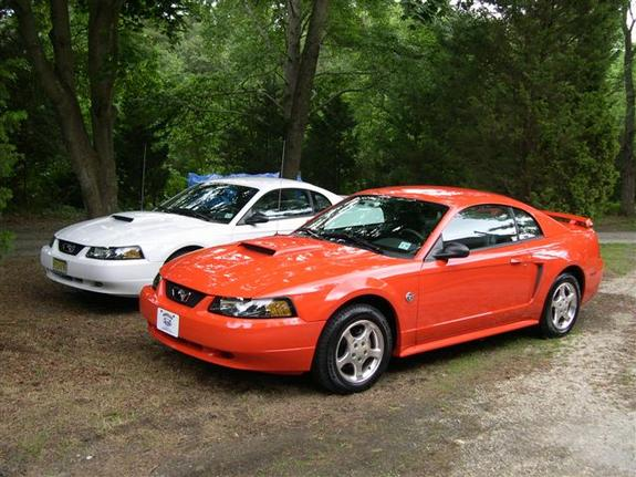 Another meteorachick 2004 Ford Mustang post... - 4908991