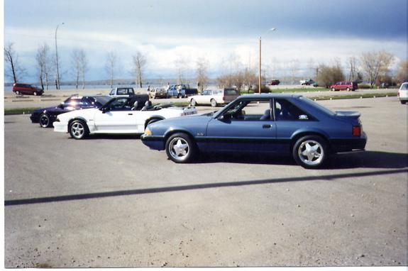 canadian_cobra 1989 Ford Mustang Specs, Photos ...