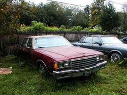 Another CuttEmUpChevy 1984 Chevrolet Caprice post... - 5002292