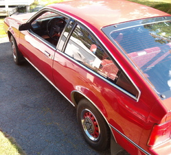 TheRoldOlds 1982 Oldsmobile Firenza