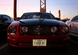 swingle007 2005 Ford Mustang