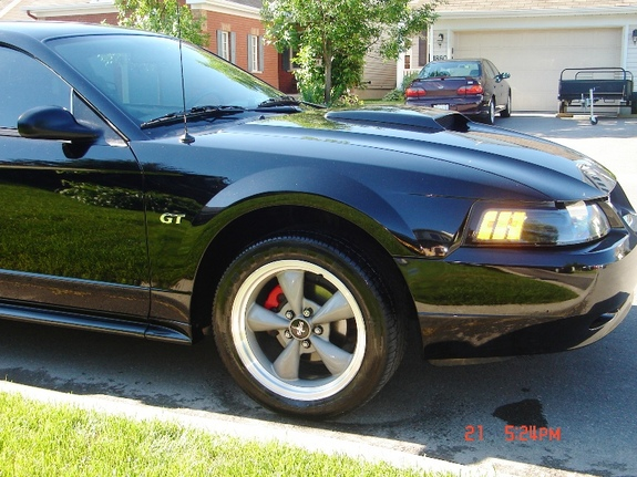 fourpointsex 2002 Ford Mustang 5186739
