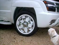 Another 325customs 2002 Chevrolet Avalanche post... - 5206573