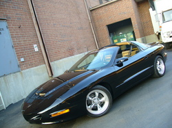ScrmnWs6s 1996 Pontiac Firebird