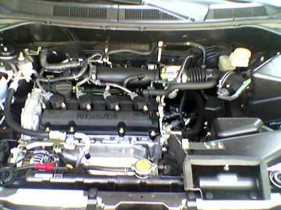 Another Wes1202 2004 Nissan X Trail Post Photo 5319660