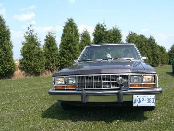 CanadianDrPhil 1982 Ford Fairmont 5451424