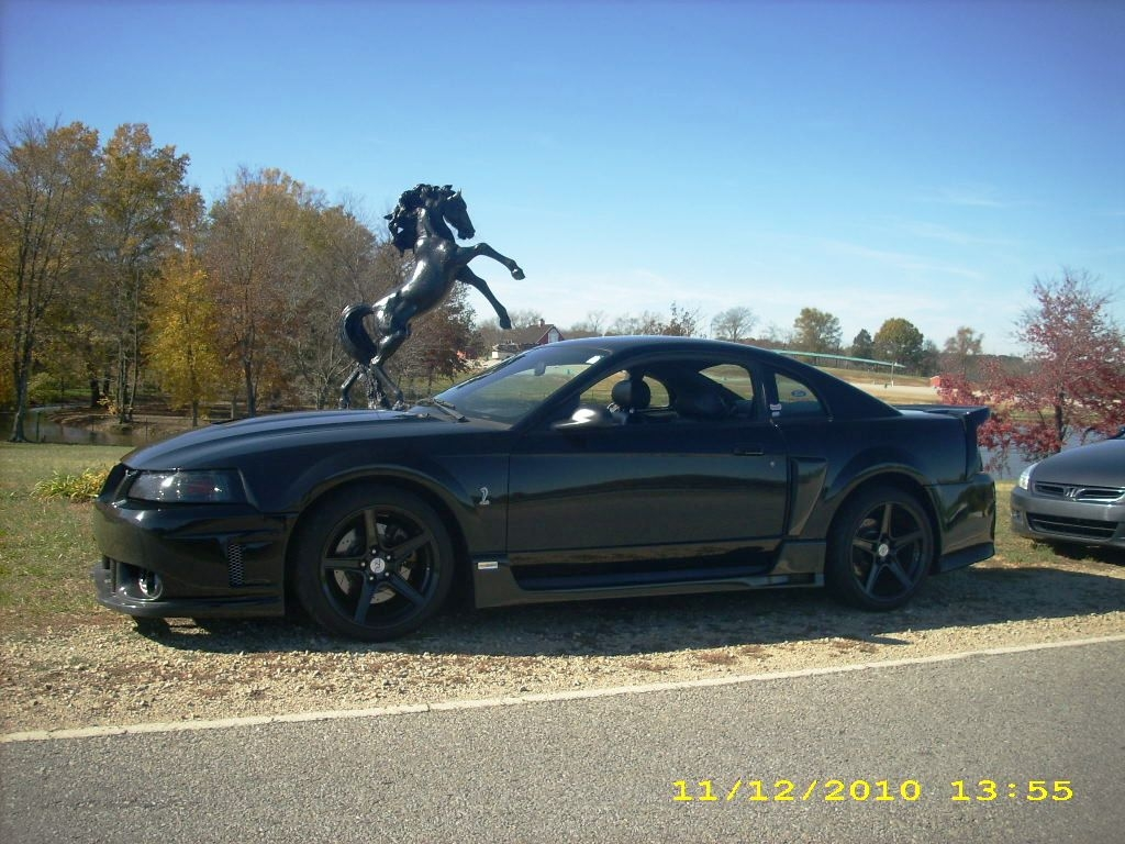 wildpony1 2001 Ford Mustang 5452071