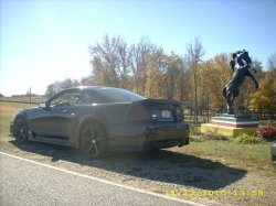 wildpony1s 2001 Ford Mustang 