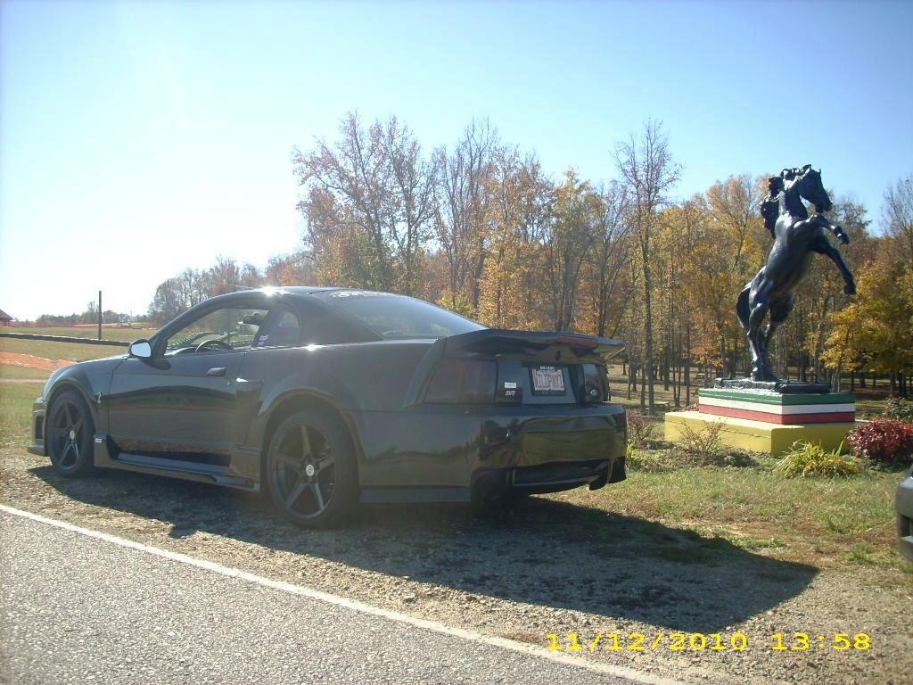 wildpony1 2001 Ford Mustang 5452072