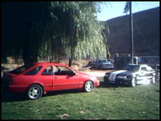 Another DionJay 1988 Merkur XR4TI post... - 5505271
