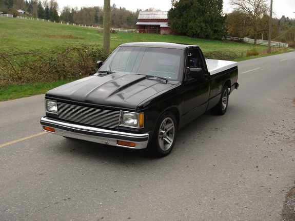 dremp 1989 Chevrolet S10 Regular Cab 5583049