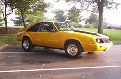 Quick5Liter1979 1979 Ford Mustang